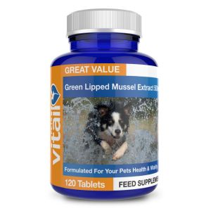 Green Lipped Mussel for Dogs 500mg (120 Tablets)