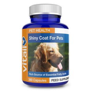 Shiny Coat and Skin Conditioner For Pets